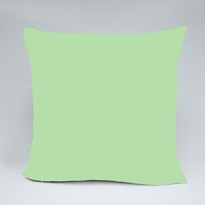 Because I Have a Brother Throw Pillows