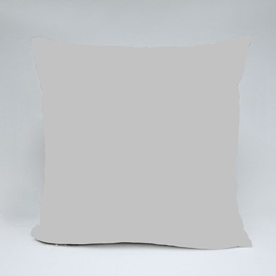 Mathematicals Method Steps Throw Pillows