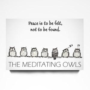 Meditating Owls