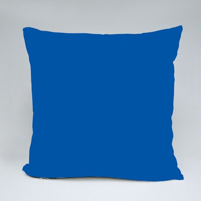 We Have Nothing to Lose Throw Pillows