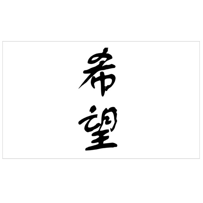 Chinese Character Hope 希望 Hope Is Everywhere Sport Flasks