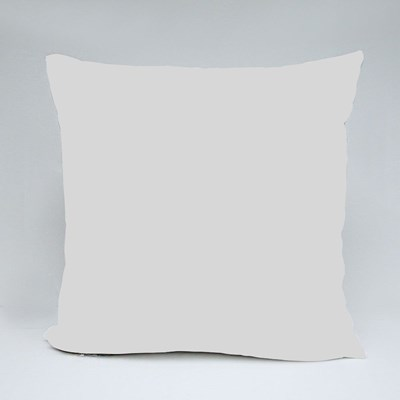 Labeled Bmx Components Throw Pillows