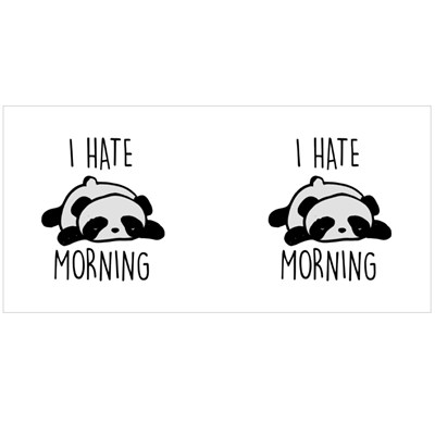I Hate Morning Sleeping Panda Magic Mugs