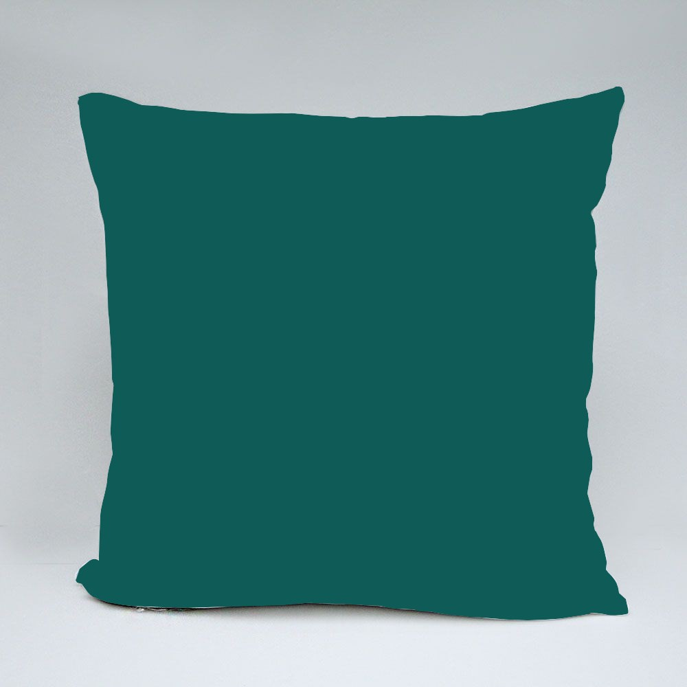 Inspiration to Lose Weight Throw Pillows