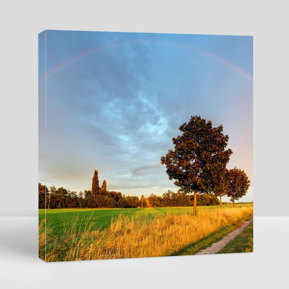 Rainbow Over Field Road Canvas (Square)