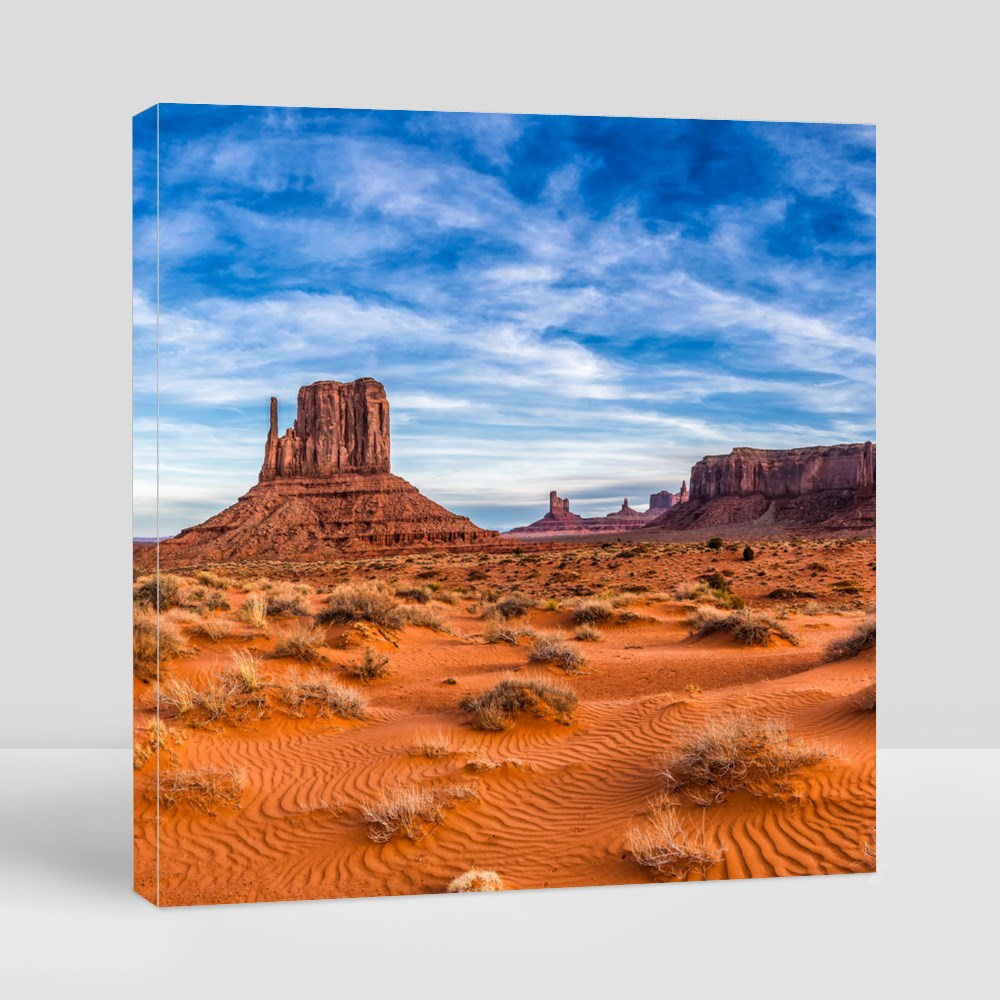 Red Rock Canyon Desert Canvas (Square)