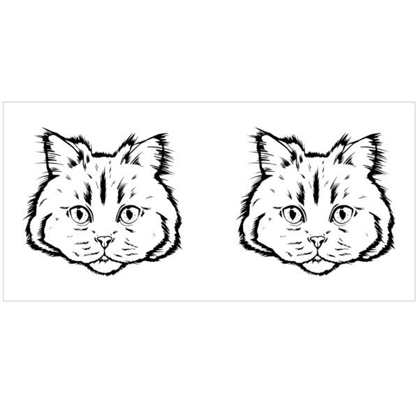 Black and White Muzzle of a Siberian Cat. Colour Mugs