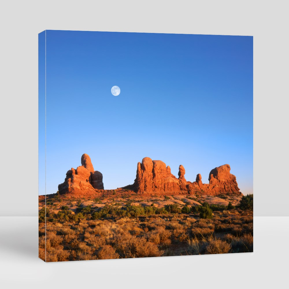 A Deep Blue Afternoon Sky and Daylight Full Moon Canvas (Square)