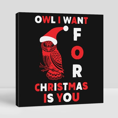 Owl I Want for Christmas Is You 帆布畫(正方形)