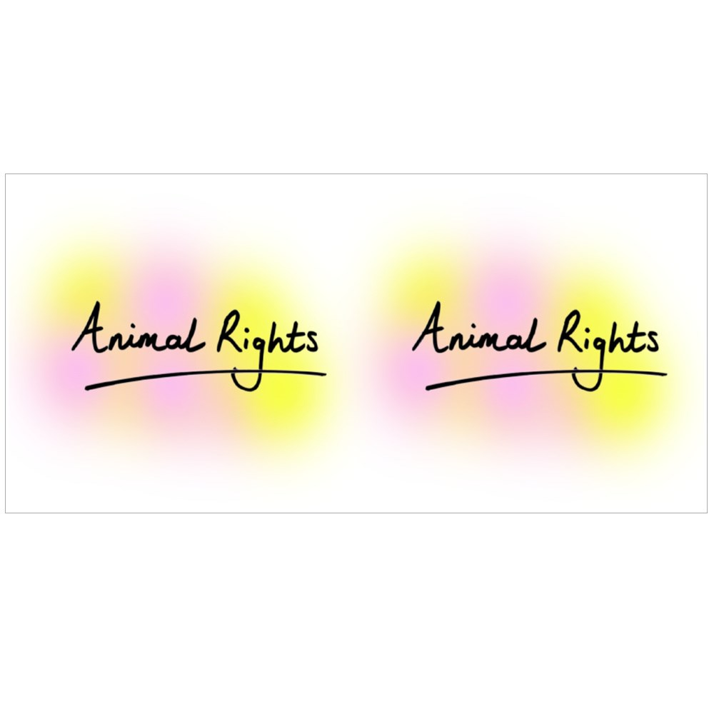 Animal Rights Colour Mugs