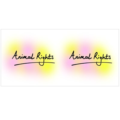 Animal Rights Magic Mugs