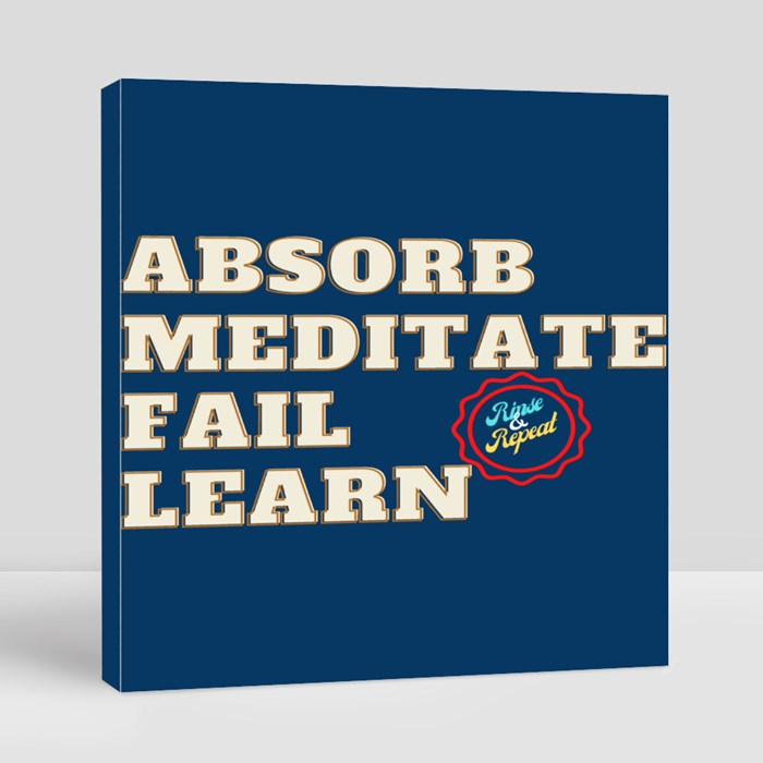 Absorb, Meditate, Fail, Learn. Rinse and Repeat A. Canvas (Square)