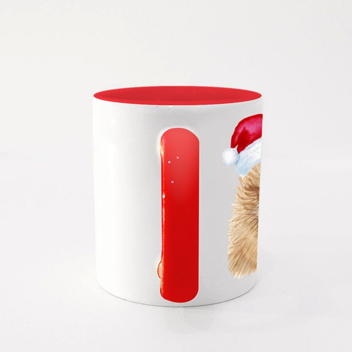 Pomeranian Colour Mugs