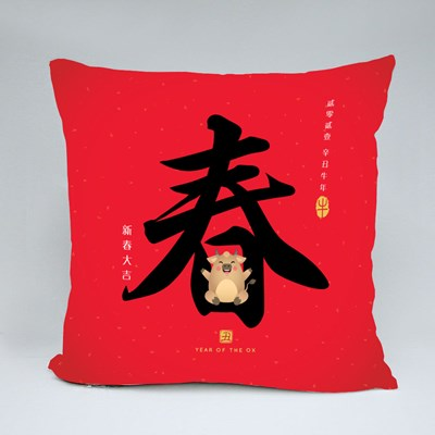 Chinese New Year Calligraphy Throw Pillows