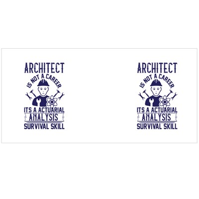 Architect Is Not a Career Magic Mugs