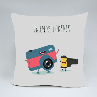 Funny Camera and Camera Roll Throw Pillows