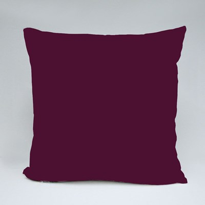 I Plan on Sewing Throw Pillows