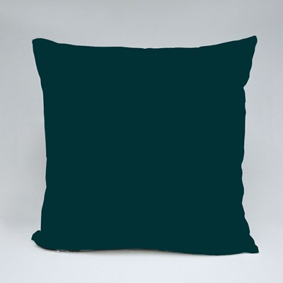 The Best Brothers Get Throw Pillows