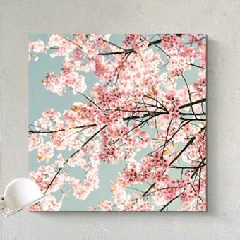 Printcious Inspiration - Canvas > Canvas (Square)
